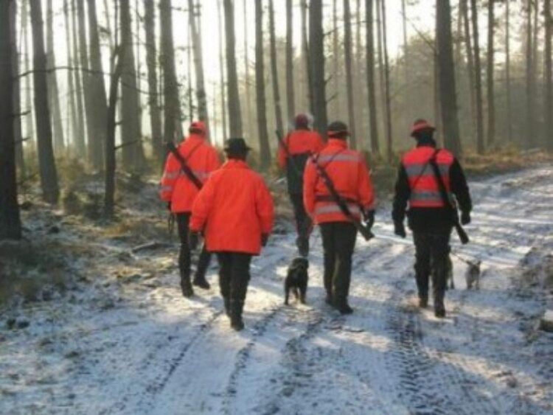 Fragen aus der Jägerprüfung – Jagdpraxis