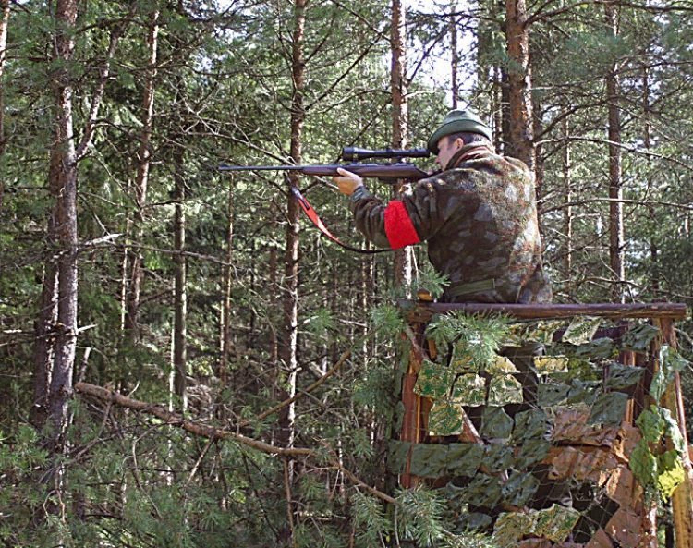 Das Jagdrevier im Dezember – Wissenswertes zur Riegeljagd