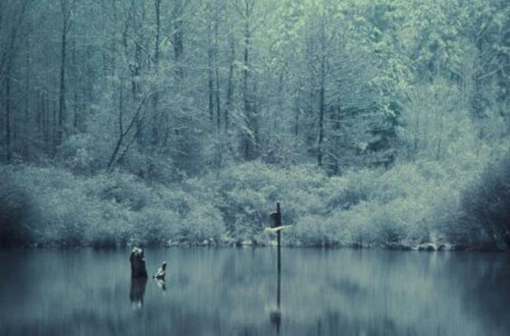 Fragen aus der Jägerprüfung zur Jagd im Winter