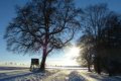 Hege und Jagd im Dezember