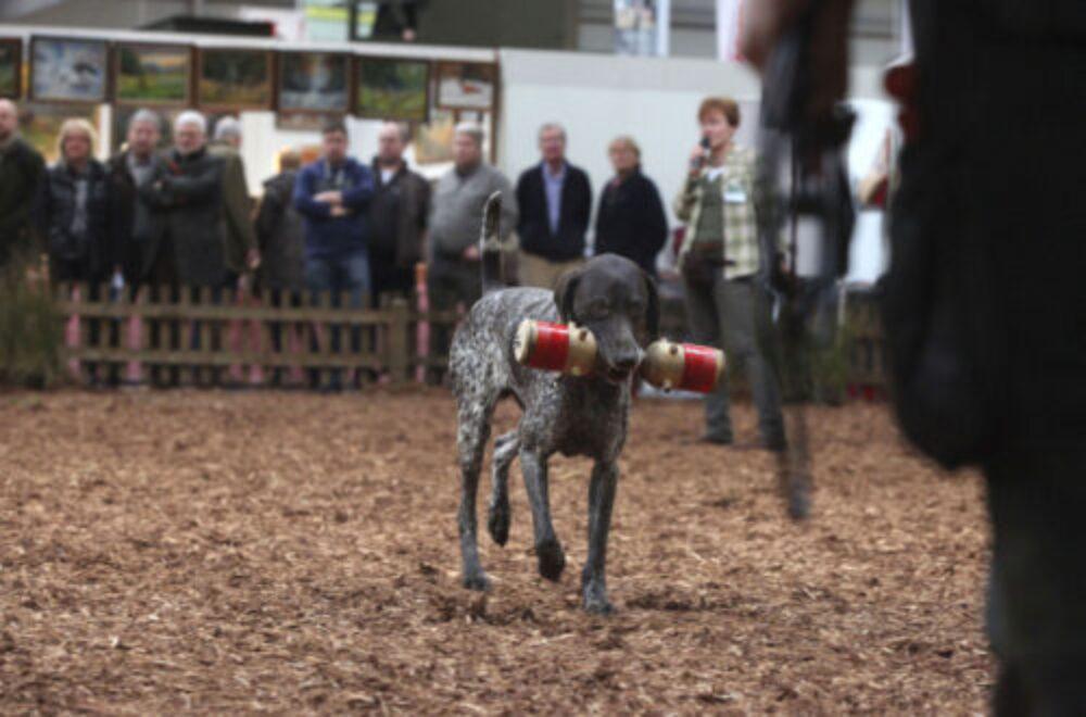 Die Highlights der Jagd & Hund Messe 2015
