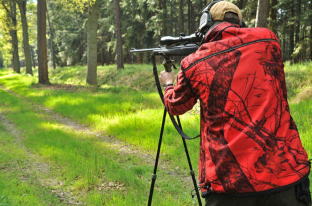 Fragen aus der Jägerprüfung – Üben für den Ernstfall