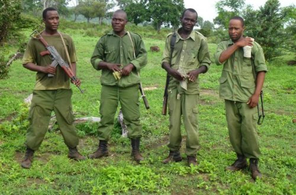 Artenschutz dank nachhaltiger Bejagung
