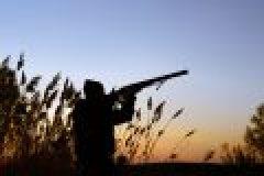 Entenjagd – Jagdliche Freuden im Niederwildrevier