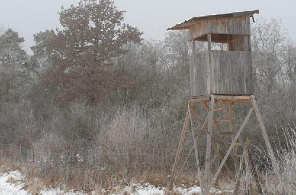 Hege und Jagd im Februar