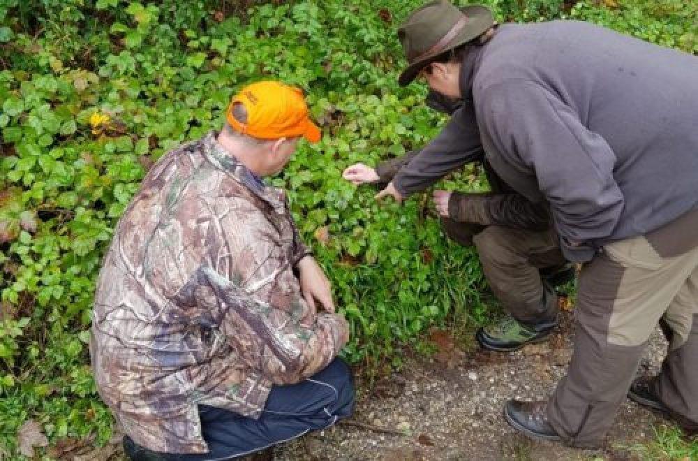 Fragen aus der Jägerprüfung – Schußzeichen
