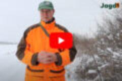 Winterspaziergang im Jagdrevier