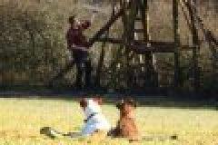 Das Farm-Land Outdoor Hundebett im Test